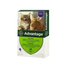 Адвантейдж №4 от 4 кг капли противопаразитарные для кошек Bayer - ИНСЕКТОАКАРИЦИДНЫЕ КАПЛИ