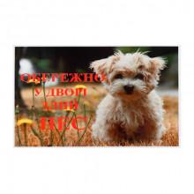 Табличка Обережно у дворі злий пес БОЛОНКА  МТ115